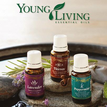 YL-oils2