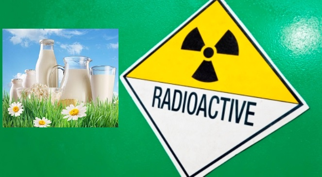 mleko_radioaktywne
