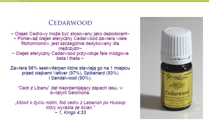 cedarwood3
