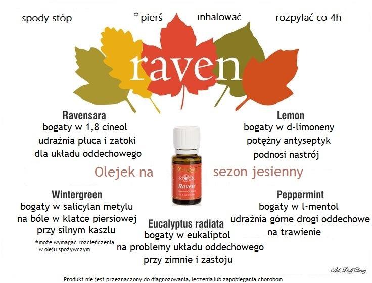 raven(2)