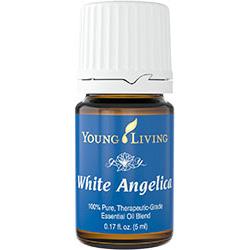 white_angelica