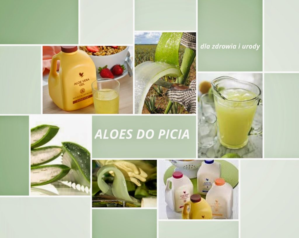 aloes_do_picia